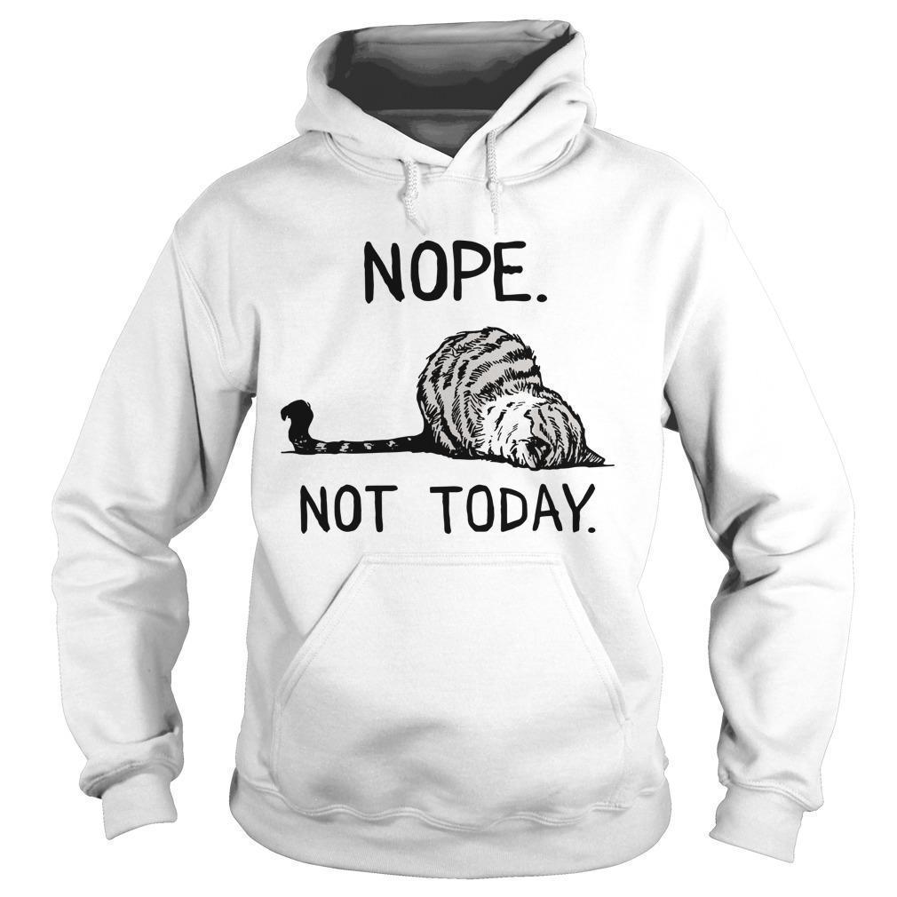 Cat Nope Not Today Hoodie