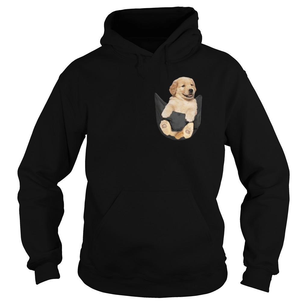 Baby Golden Retriever In Pocket Hoodie