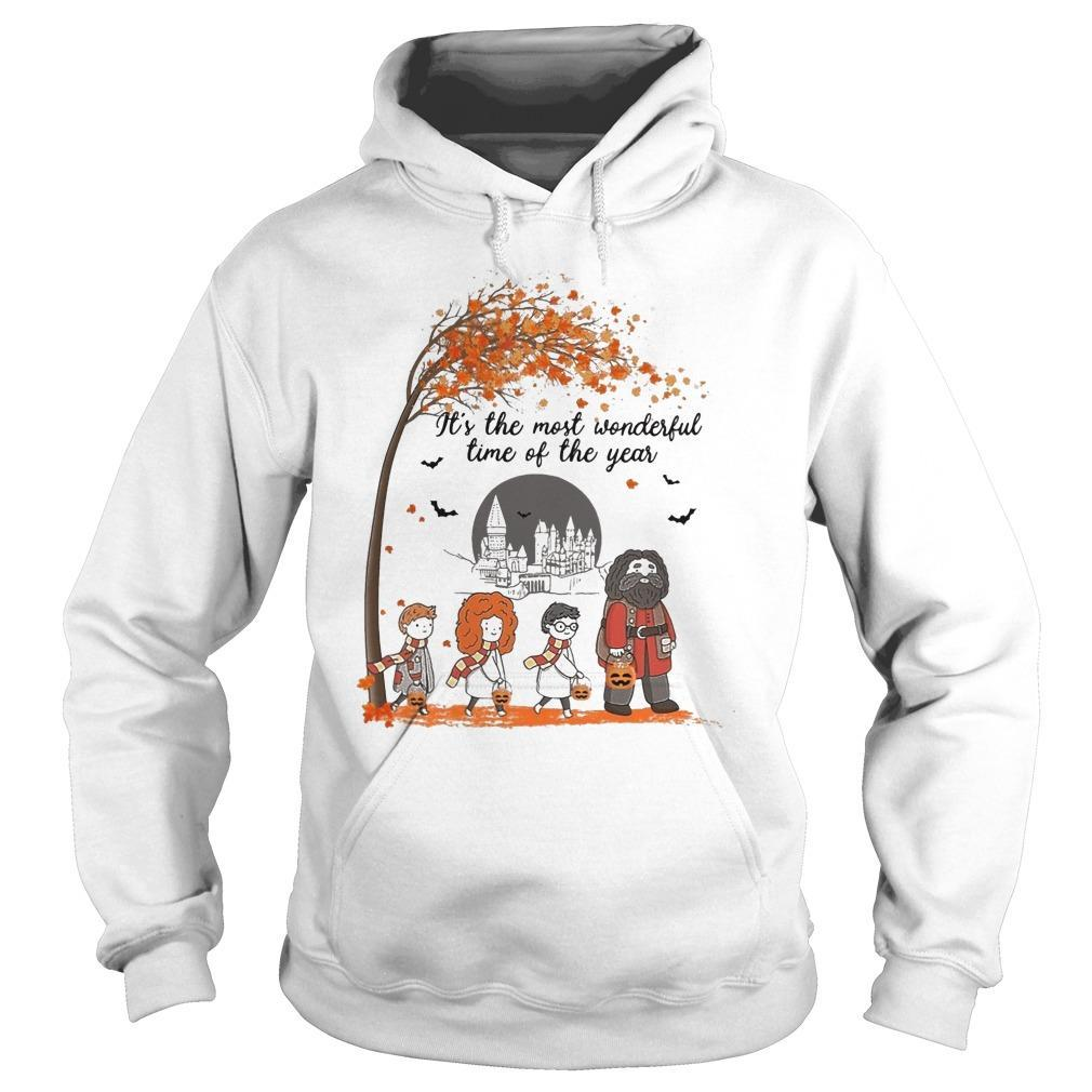 Halloween Harry Potter It's The Most Wonderful Time Of The Year Hoodie