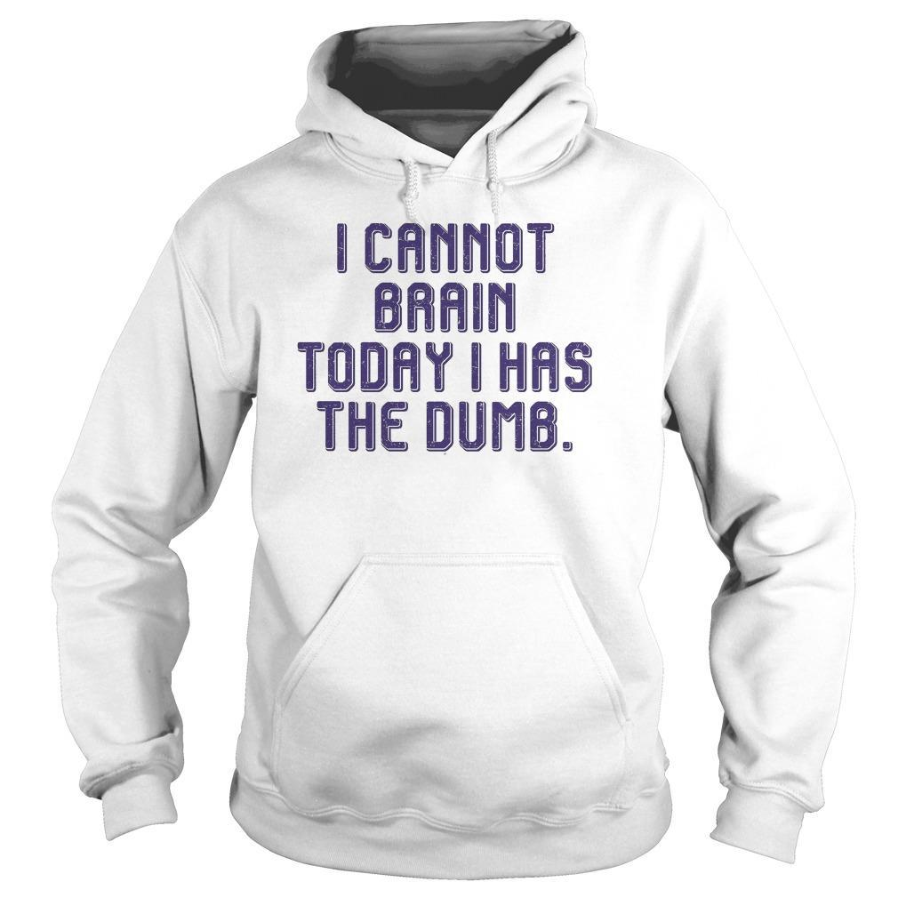 I Cannot Brain Today I Has Dumb Hoodie