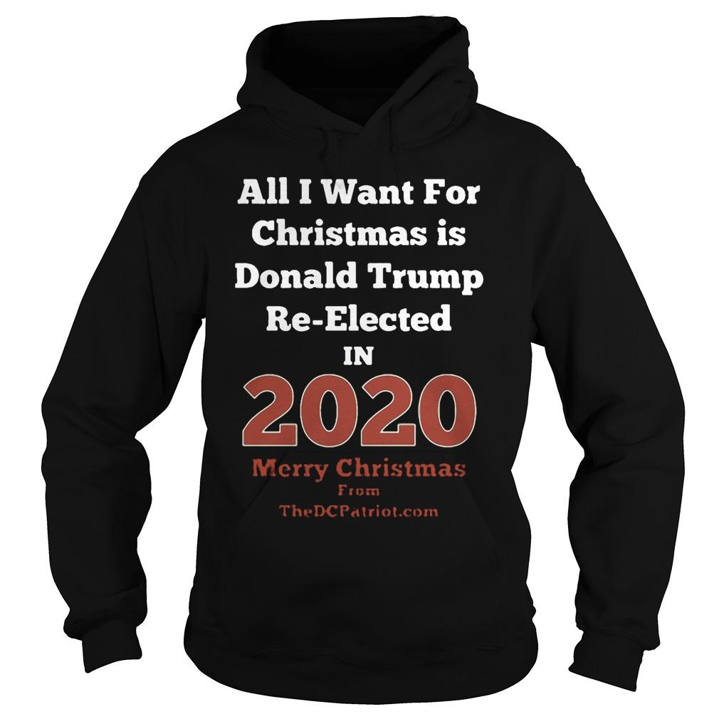 All I Want For Christmas Is Donald Trump Re Elected In 2020 Hoodie