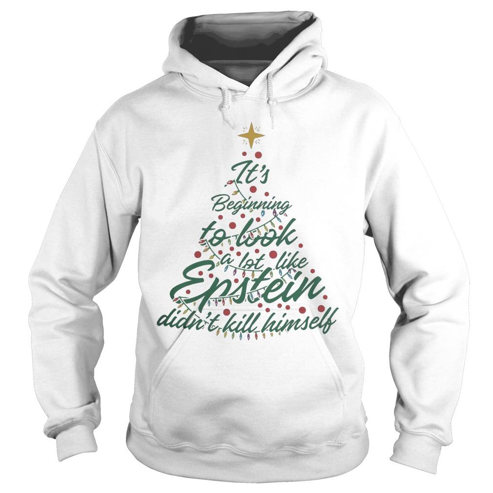 It's Beginning To Look A Lot Like Epstein Didn't Kill Himself Hoodie
