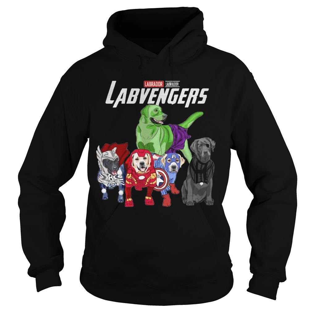 Labrador Labvengers Hoodie