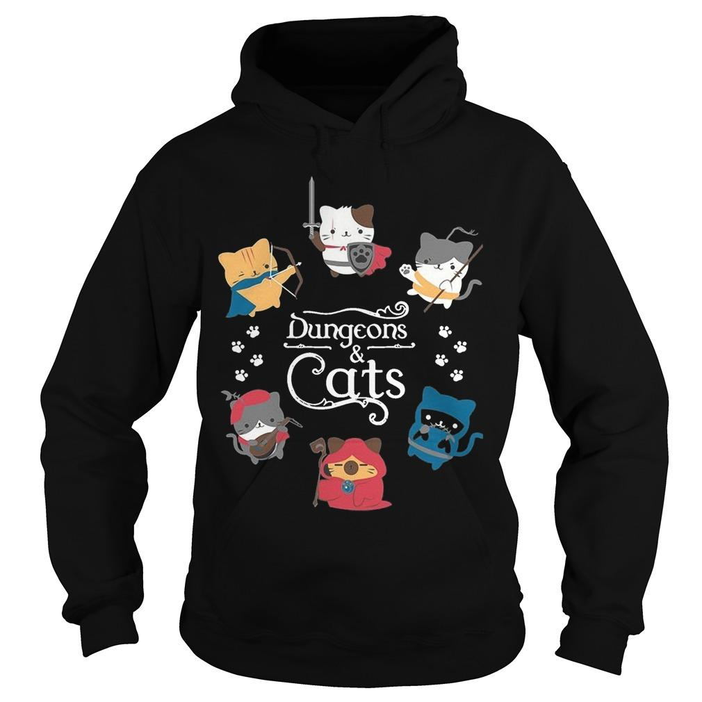 Dungeons And Cats Hoodie