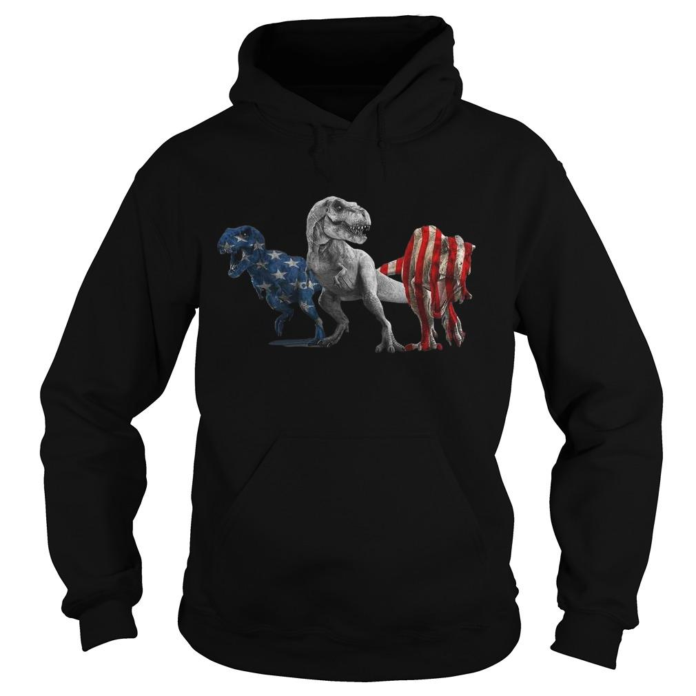 American Flag Independence Day Dinosaurs Hoodie