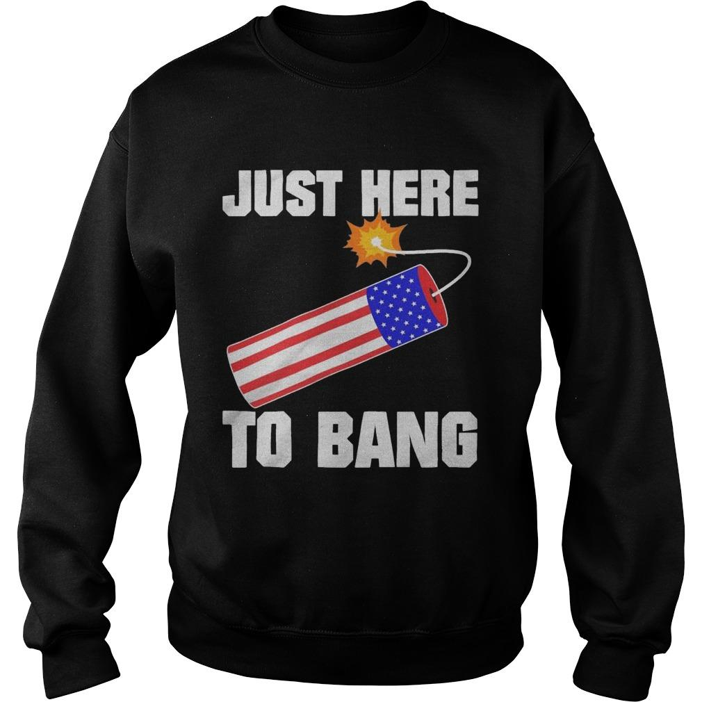 American Flag Just Here To Bang Sweater