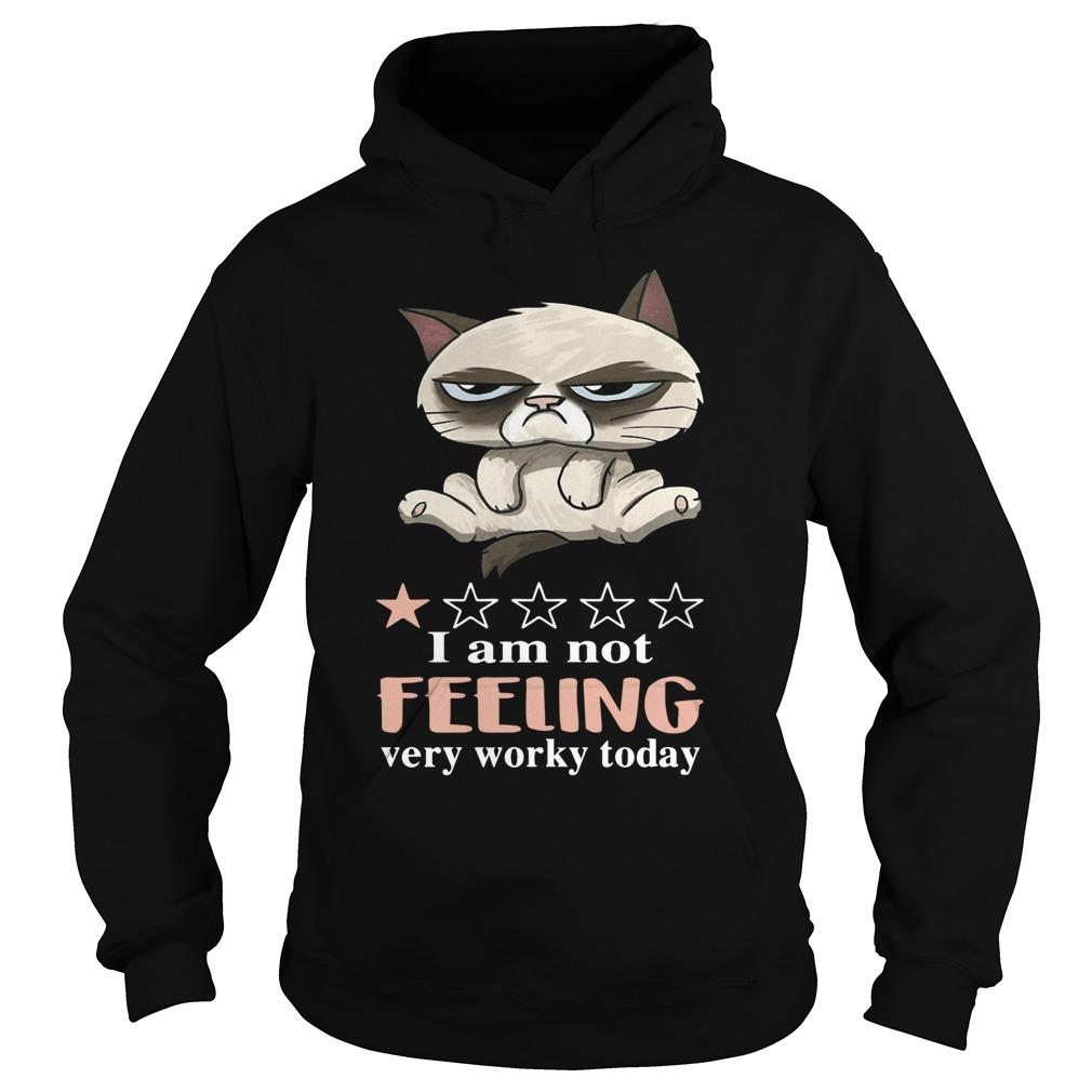 Cat Grumpy I Am Not Feeling Very Worky Today Hoodie