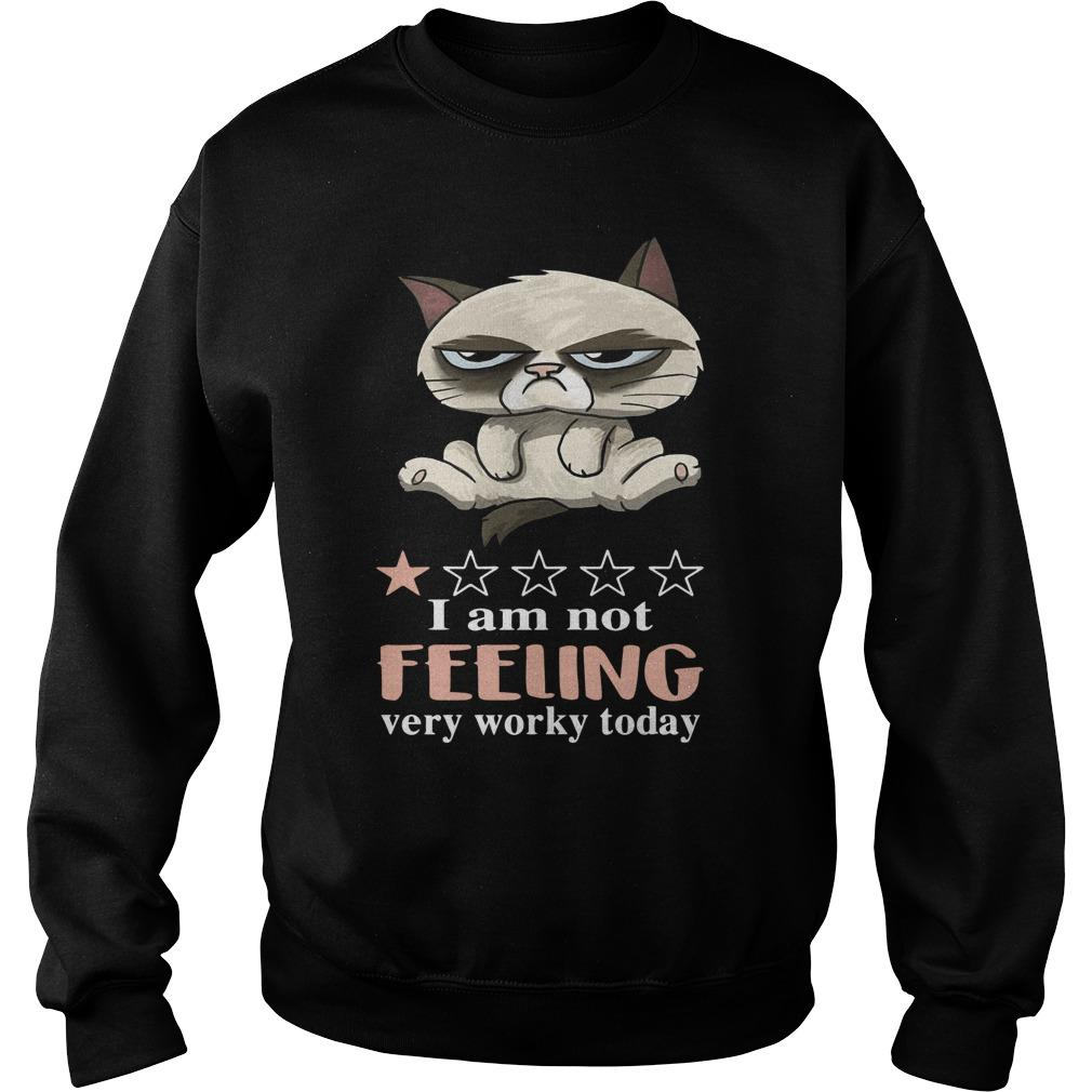 Cat Grumpy I Am Not Feeling Very Worky Today Sweater