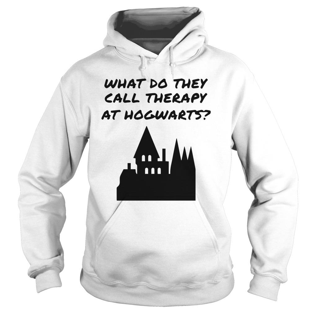 Harry Potter What Do They Call Therapy At Hogwarts Hoodie