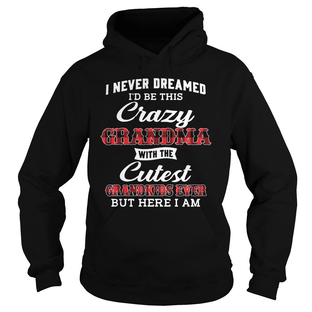 I Never Dreamed I'd Be This Crazy Grandma With Cutest Grandkids Hoodie