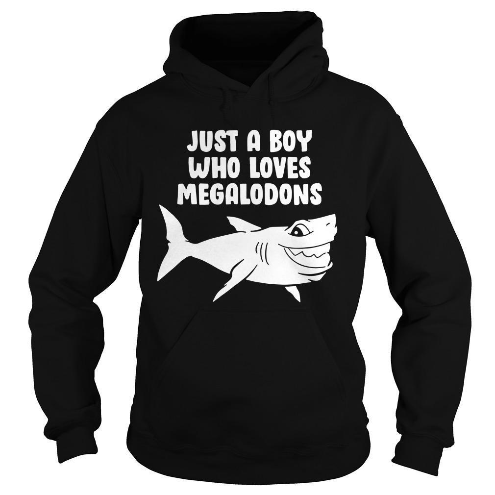 Just A Boy Who Loves Megalodons Hoodie
